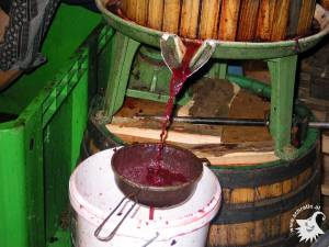 20021003-Weinpressen-03