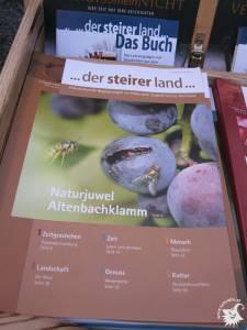 20100909-WirtschaftstreibendeHeimschuh-08